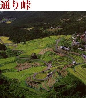 風伝峠の麓から吉野へ向かう北山...